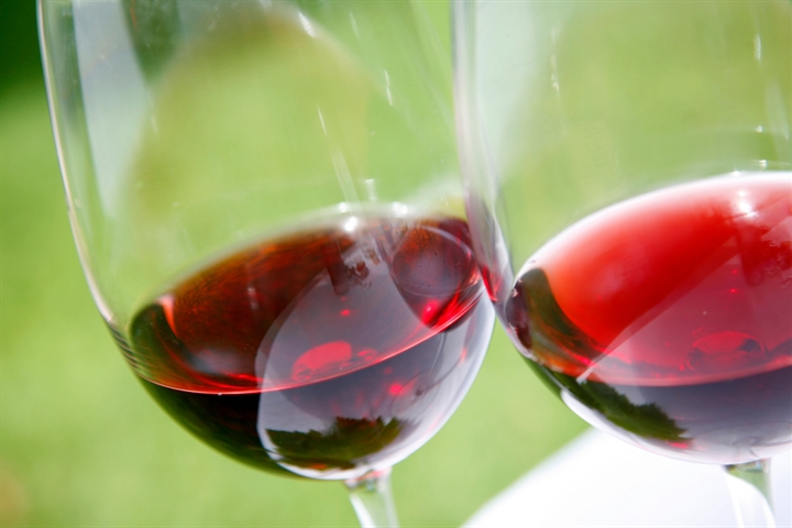 Traverse City Wine Tour Packages